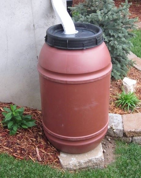 rain barrel pic2