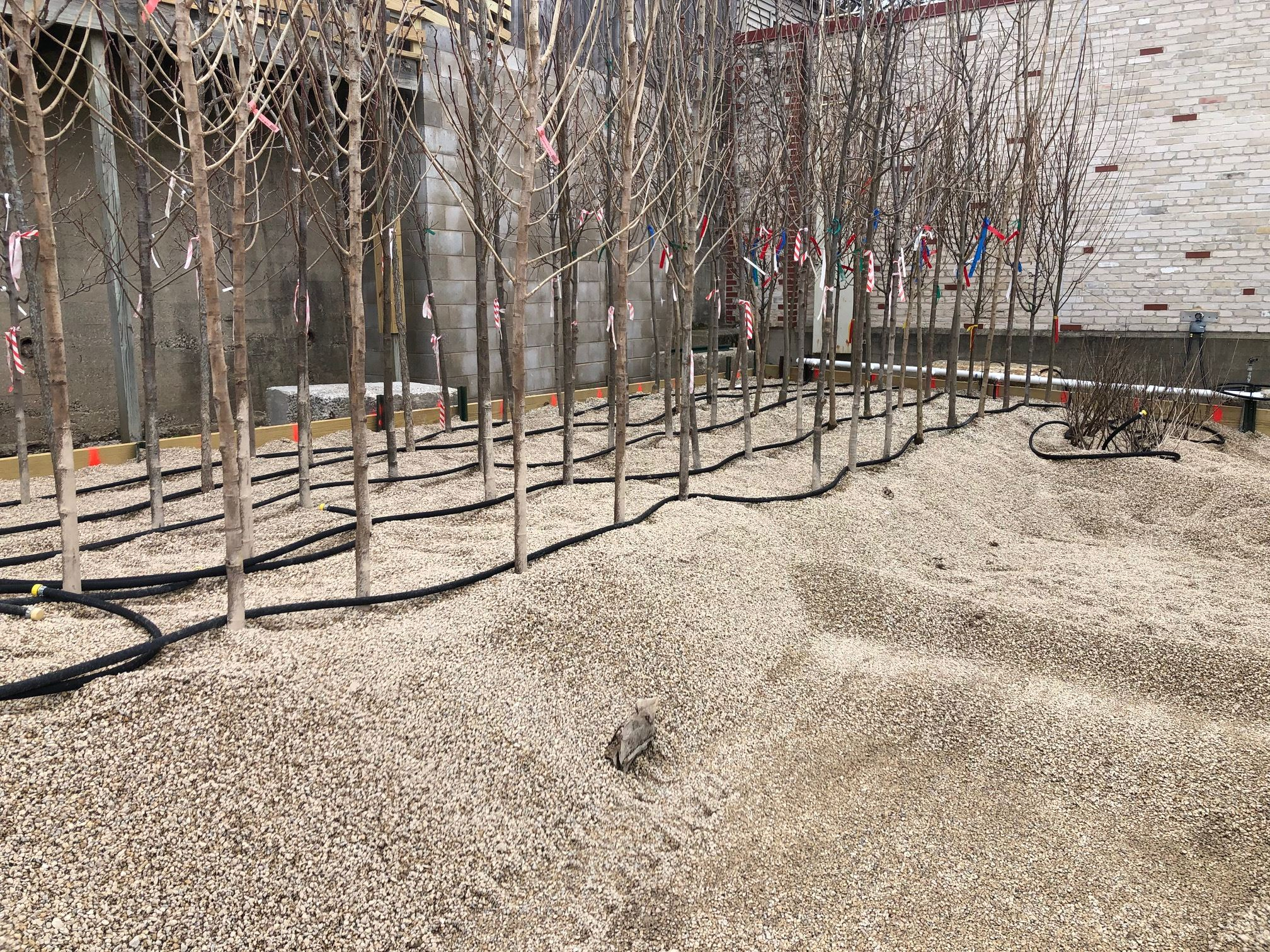 gravel bed installation 5